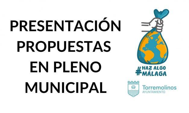 Participación en el Pleno Municipal de Torremolinos